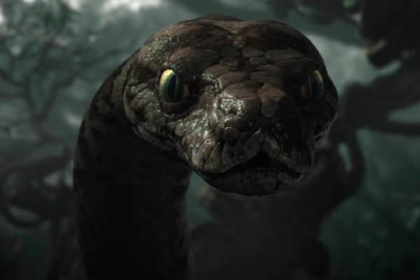 Snakes lifespan