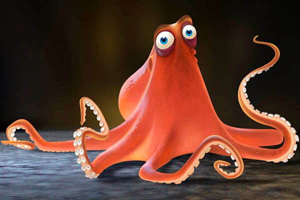 Octopuses lifespan